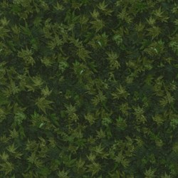 Danscapes - Leaf Dark Green - by Dan Morris for RJR Fabrics