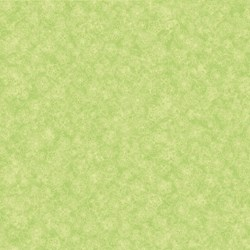 Light Lime w/ Floral Tonal- Mulberry Lane-Raspberry Lane By Susan Beevers