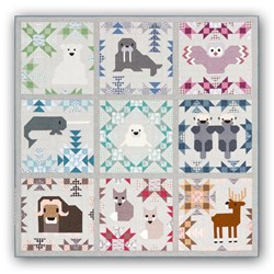 North Star Sampler Block of the Month or All at Once Quilt Kit  Starts August - Reserve Yours Now!