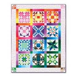 White Hot Flashes Sampler  Block of the Month Quilt (or All at Once!)