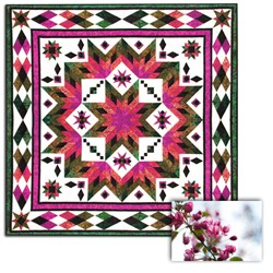 Taos (Spring Flowers) Block of the Month OR All at Once Queen/King Size Quilt
