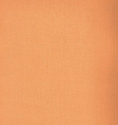 Simply Solids - Light Orange - by Maywood Studios