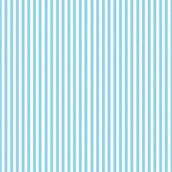 Teeny Weeny Stripe Turquoise Lakehouse Dry Goods