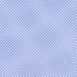 Itty Bitty Polka Ditty Blue