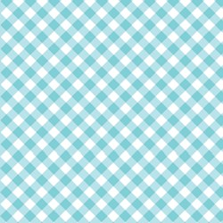 Chunky Check Turquoise by Lakehouse Dry Goods
