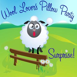 Wool Lover's Pillow Party