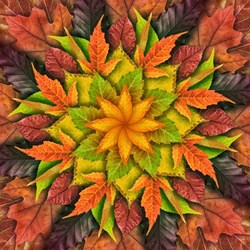 """Dream Big - LEAF"" Autumn- a Hoffman Spectrum Print R4617-66 AUTUMN"