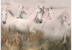 Call of The Wild - Spirit Horses / Dawn #R4592-112