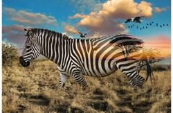 Call of The Wild - Zebra / Savanah #R4511-163