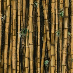 R4635-495-Bamboo -  Hoffman Call of the Wild Digital  Print - Bamboo