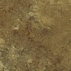"Remnant - 17"" - Stonehenge Woodland Spring - Brown Tonal by Linda Ludovico"