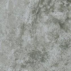 """9"""" Remnant - Stonehenge Woodland Spring - Tonal Limesone by Linda Ludovico"""