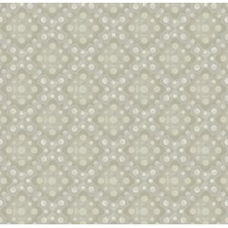 Shadowland IV -Beige SHAD-43  by Kona Bay Fabrics - Retired Fabric!