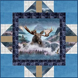 """Last One!  Exclusive """"Handsome Prince"""" Deluxe Minky Quilt Kit - Includes Backing  - Shannon Fabrics"""