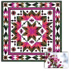 More Back In Stock!  Taos (Spring Flowers) Block of the Month OR All at Once Queen/King Size Quilt<br><i>Start Any Time!</i>