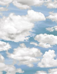 Clouds - Nature - by Timeless Treasures #CD6901-Sky