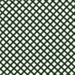 Le Petit Poulet - Green/Cream Check - by American Jane for MODA #21504-14
