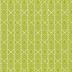Pond Collection- Pickle Modern Geo Pattern by Elizabeth Hartman for Robert Kaufman