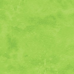 Toscana -  #721 Lime Twist - by Deborah Edwards for Northcott