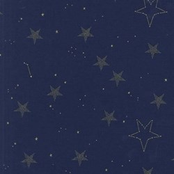 Navy Metallic Lucky Stars by Michael Miller Fabrics