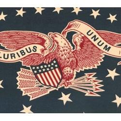 Vintage Find!  2 Panels  - Nantucket - Eagle Bunting